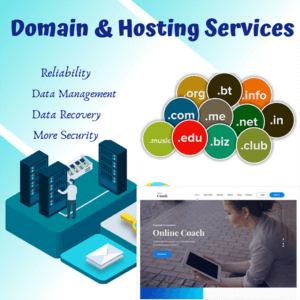 domain and hosting professional 600x600 1